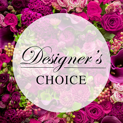 Designer\'s Choice Starting At